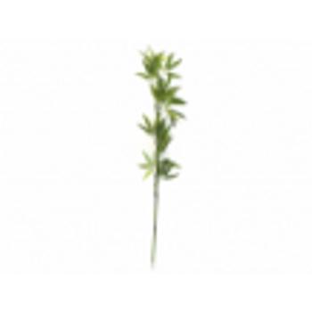 Haste de Bamboo Verde