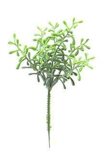 Pick de Grama Suculenta Verde Claro