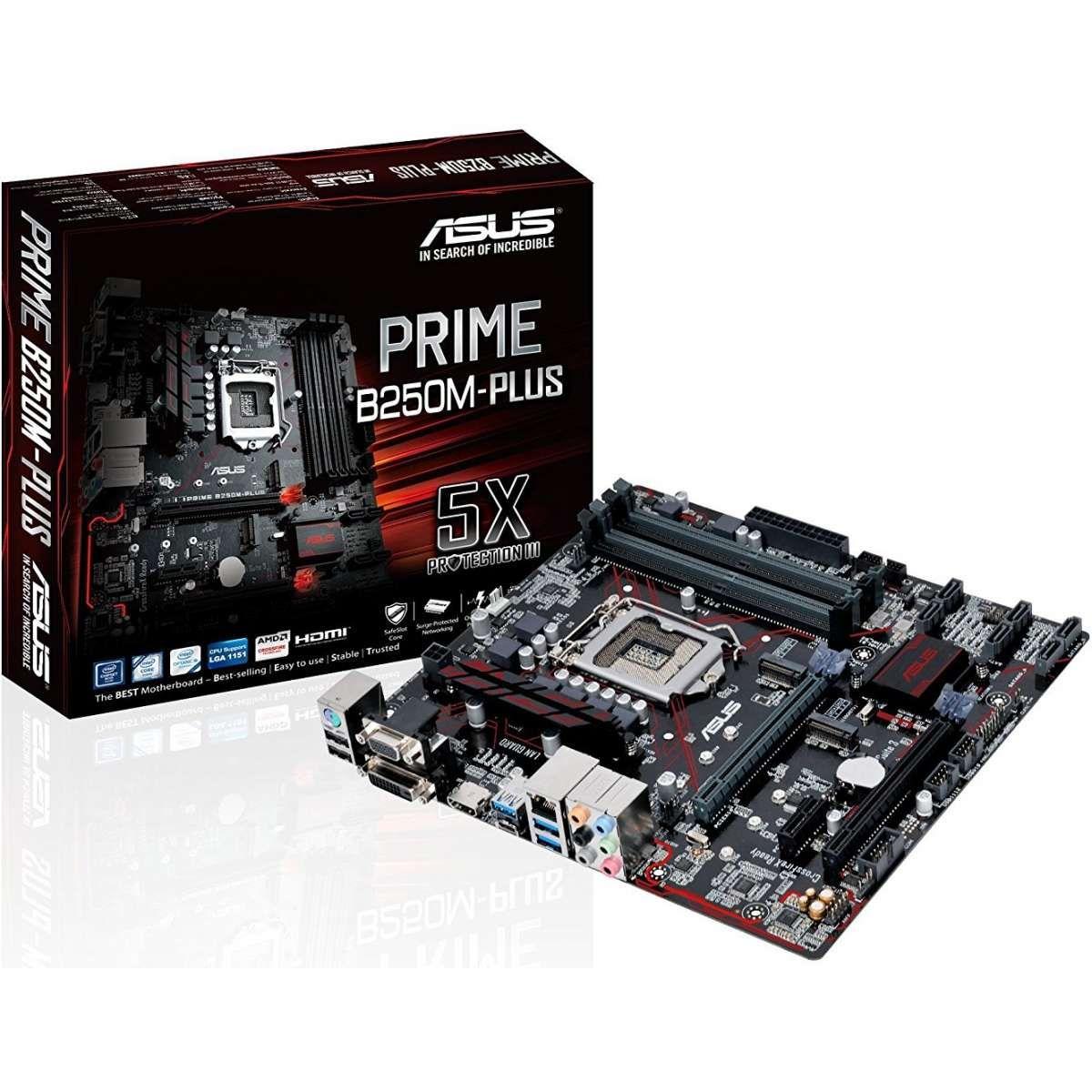 Placa Mãe Asus p/ Intel LGA 1151 mATX Prime B250M-Plus/BR DDR4, CFX,VGA/DVI/HDMI, USB 3.0,
