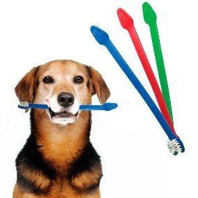 Escova Dental c/ Cabo Duplo Cat Dog