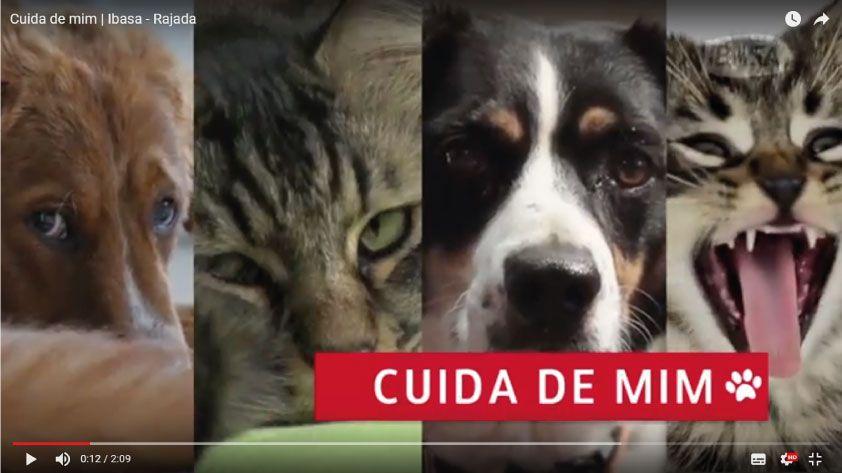 Vídeos apresentam cases de sucesso de aplicação de dermocalmantes Ibasa