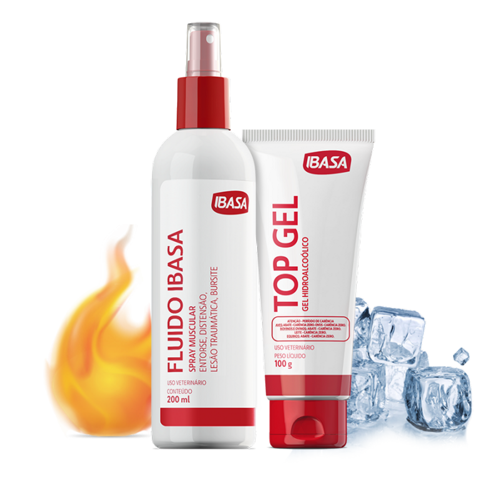 Kit Fluido IBASA + Top Gel